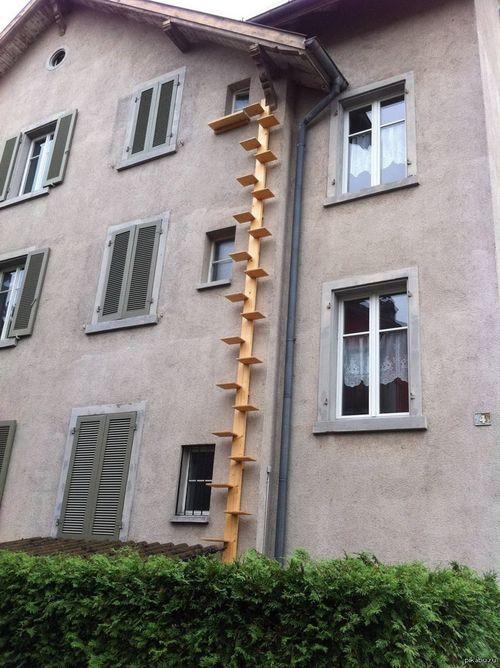 Как сделать лестницу для кота своими руками